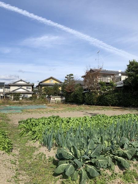 永田家への道2
