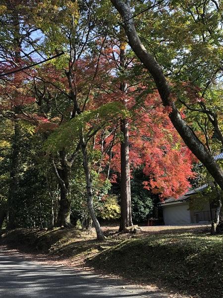 永田家への道9
